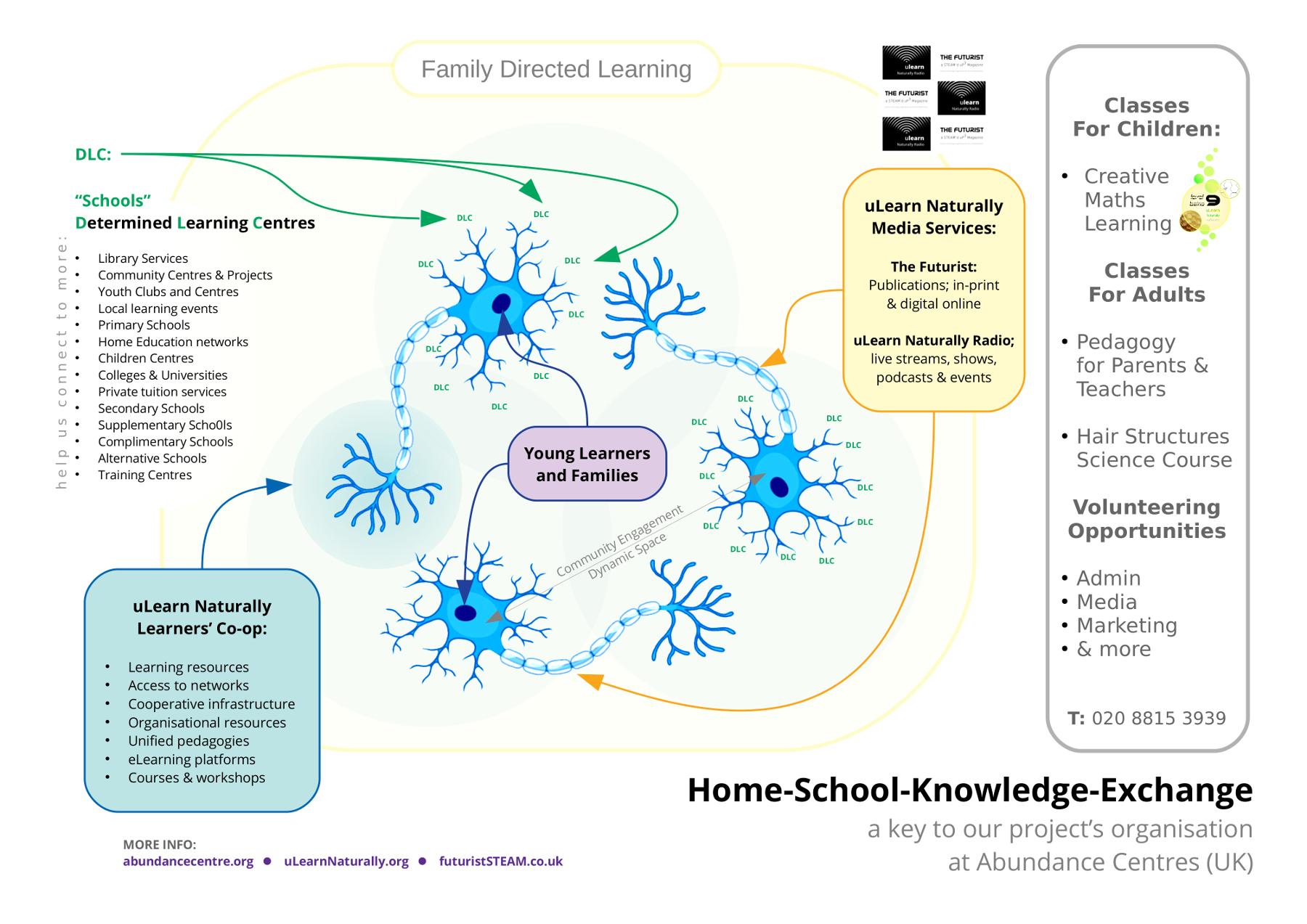 Home School Knowledge Exchange (HSKE) Icon   (the neuron key)